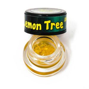 lemon-tree-live-resin